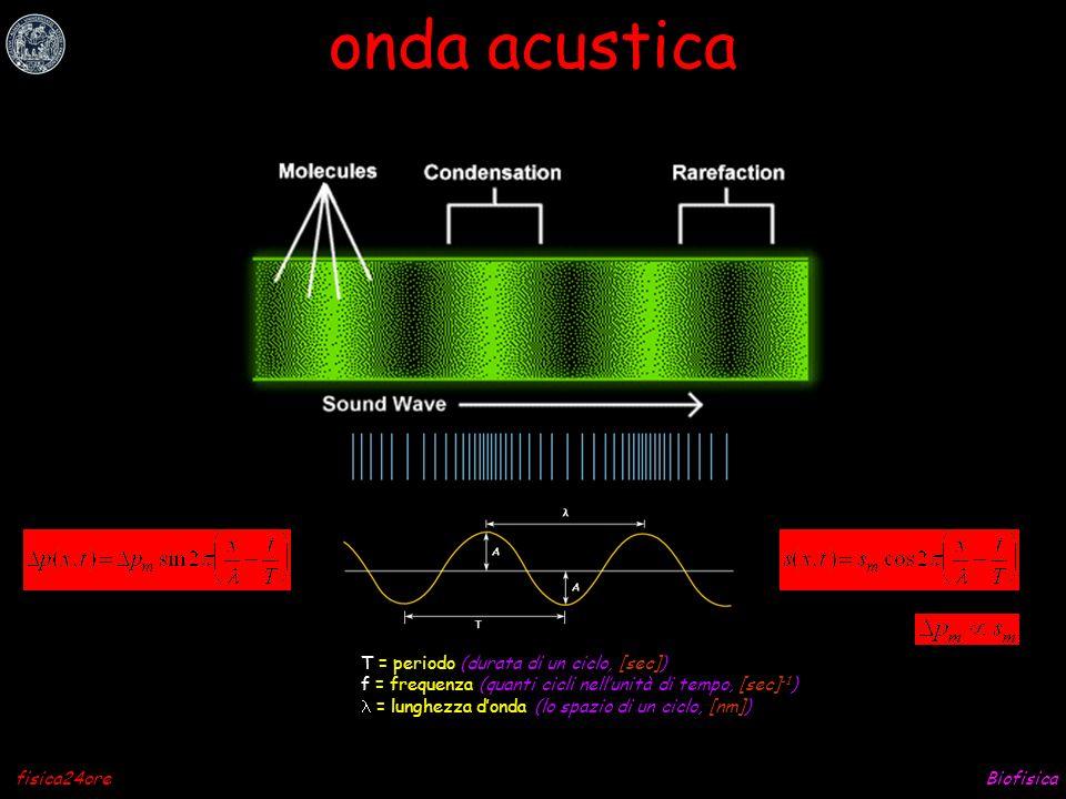 onda acustica T = periodo (durata di un ciclo, [sec])